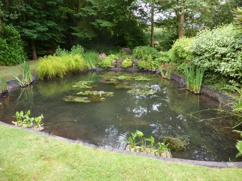 Pond Cleaning Chalfont St Giles - after