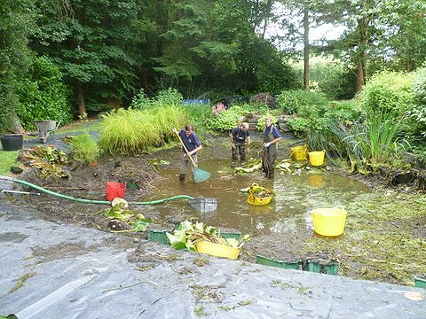Pond Cleaning Chalfont St Giles - before
