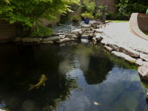Pond Refurbishment