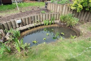 Pond Cleaning St Albans 2015