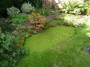 Refurbishment of a small pond, Langford, Bedfordshire