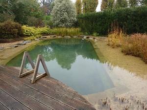Swim Pond, Radlett, Herts