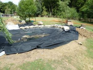Pond Refurbishment Welwyn