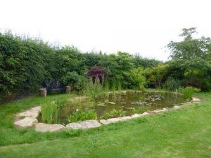Pond construction Wheathamstead